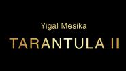 Tarantula II (онлайн обучение + гиммик) by Yigal Mesika